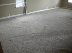 This carpet is only 3 years old, see the excessive wrinkling due to improper installation.